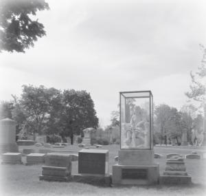 Graceland Cemetery1